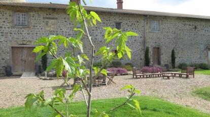 gite de Fougeres en Beaujolais